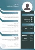 قالب رزومه کاری فارسی طرح گرافیکی کد 223